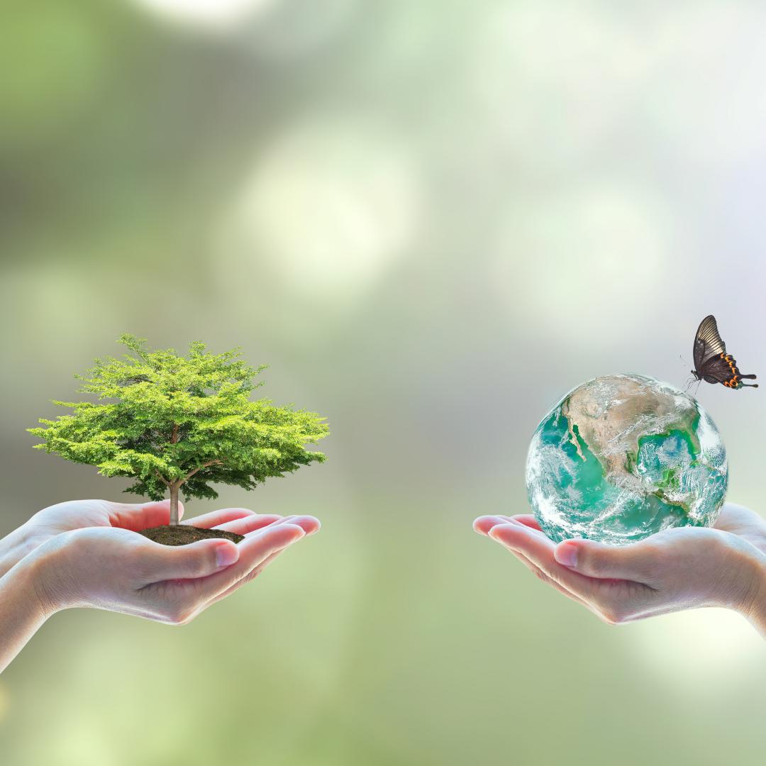 Transformações reforçam crescimento